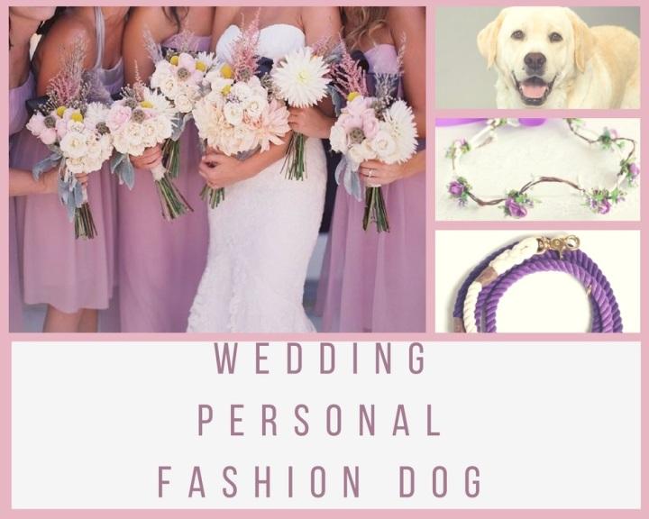 Cani ai matrimoni (2)