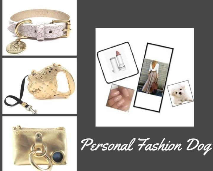 Personal Fashion Dog-2